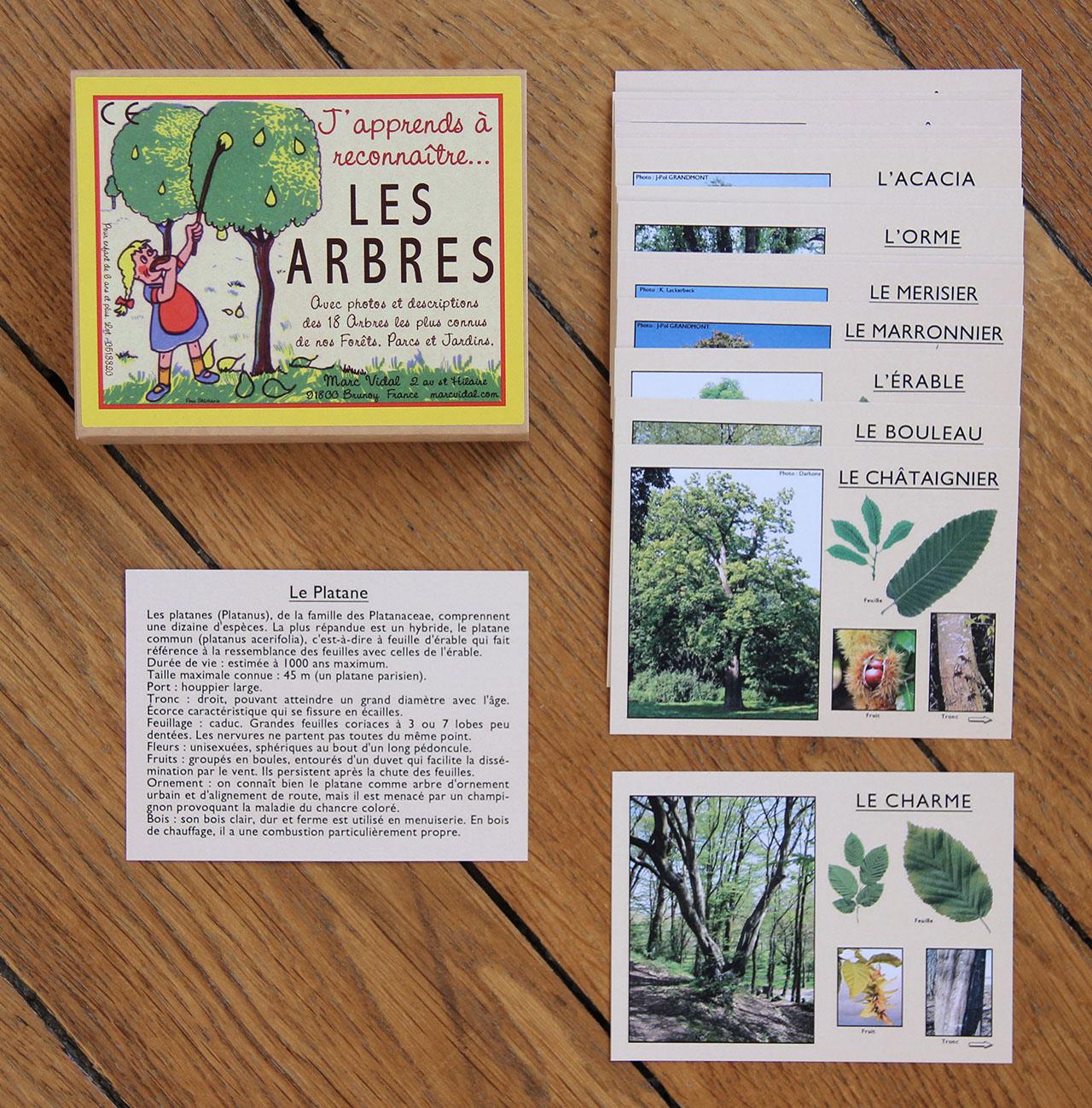 mathûvû enfants jeu cartes Marc Vidal arbres rétro lyon