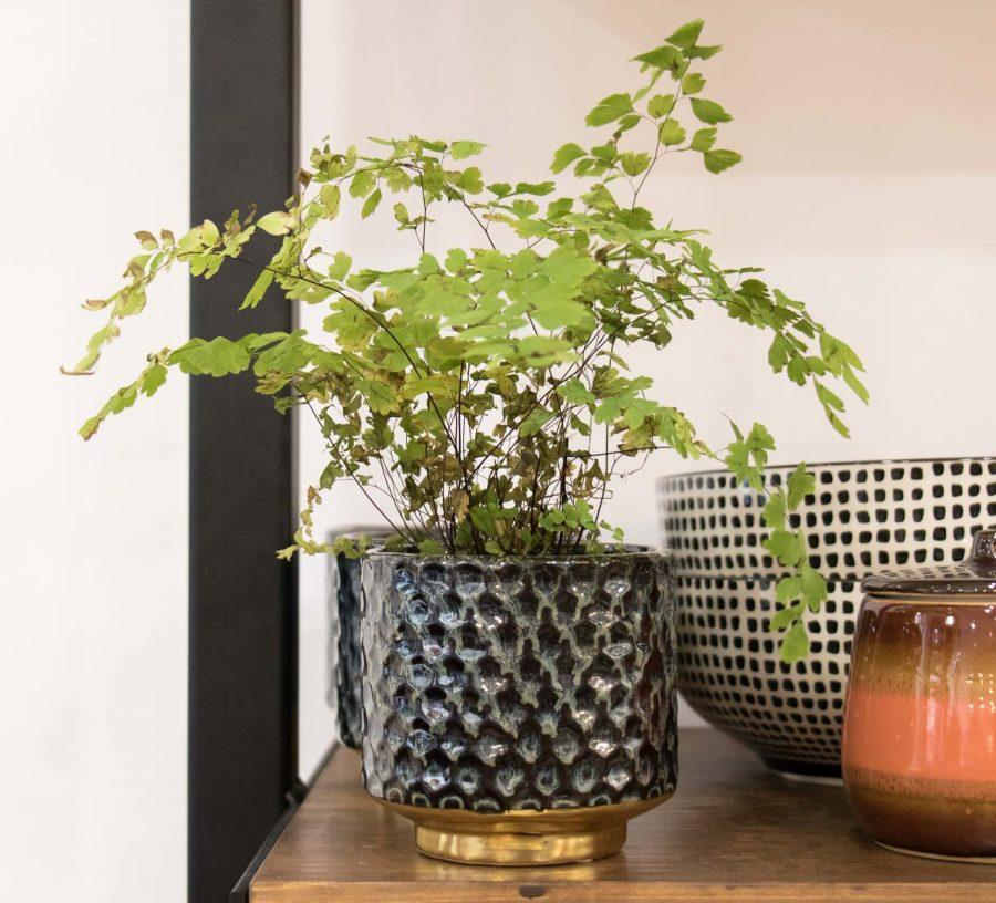 Cache-pot noir et doré Bloomingville - Maison Mathuvu