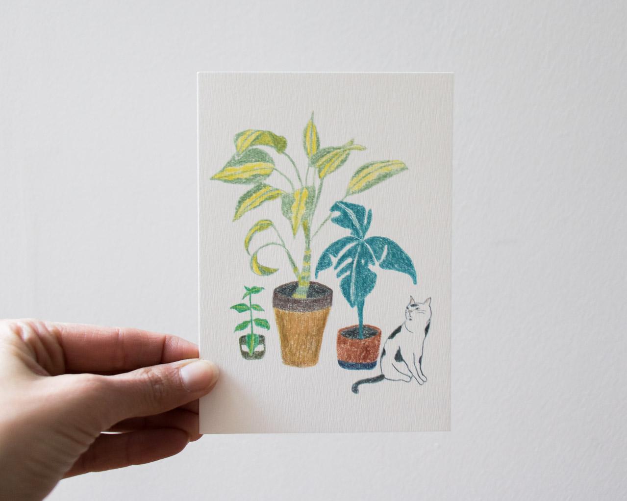 Carte chat et plantes Sprz - Maison Mathuvu