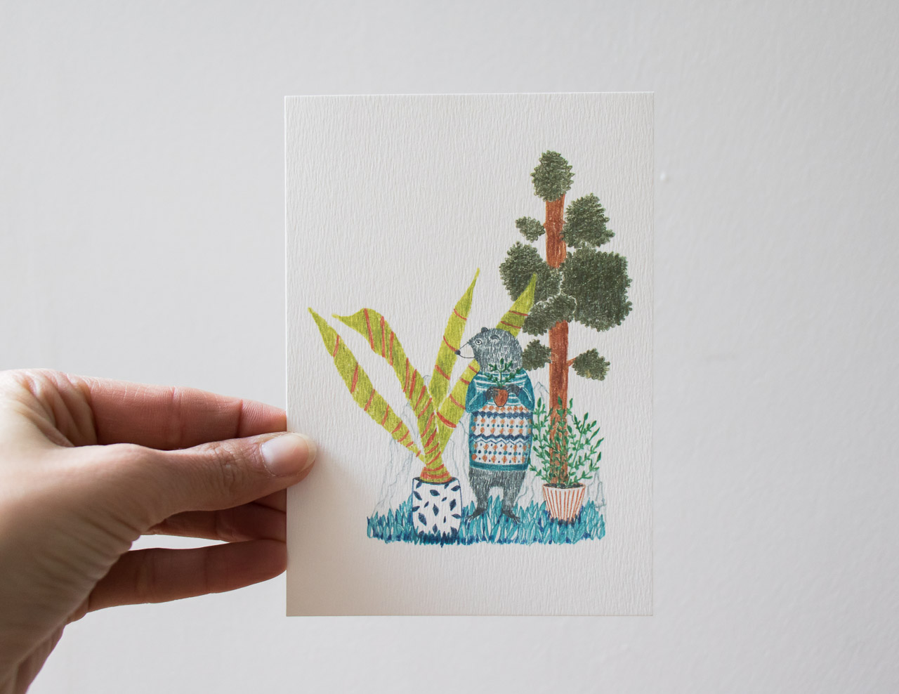 Carte ours Sprz - Maison Mathuvu