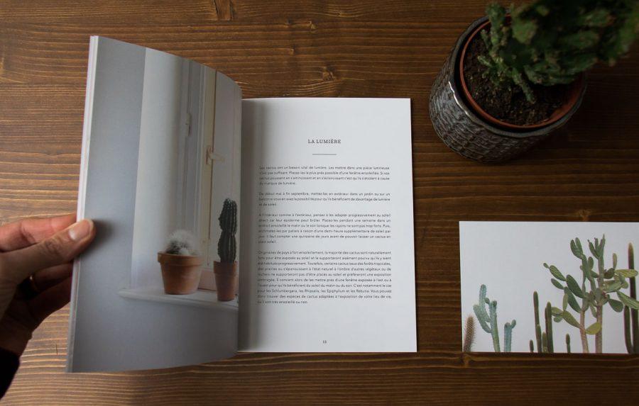 Livre vivre avec les cactus audrey jeanne - Maison Mathuvu