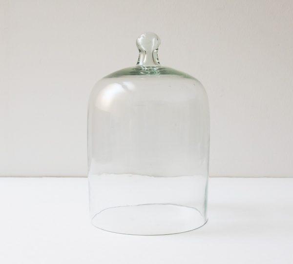 Cloche en verre - Grand modèle Madam Stoltz - maison mathuvu