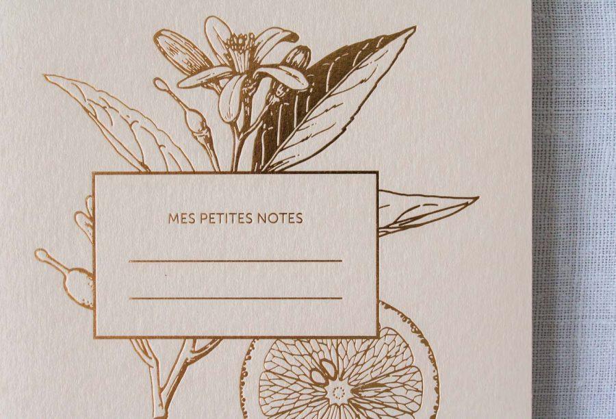 Carnet épais - Lemonade les éditions du paon - maison mathuvu