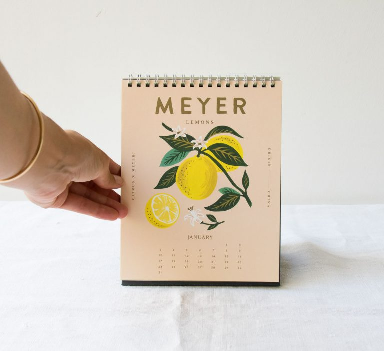 Calendrier 2021 - Lemon rifle paper co - maison mathuvu
