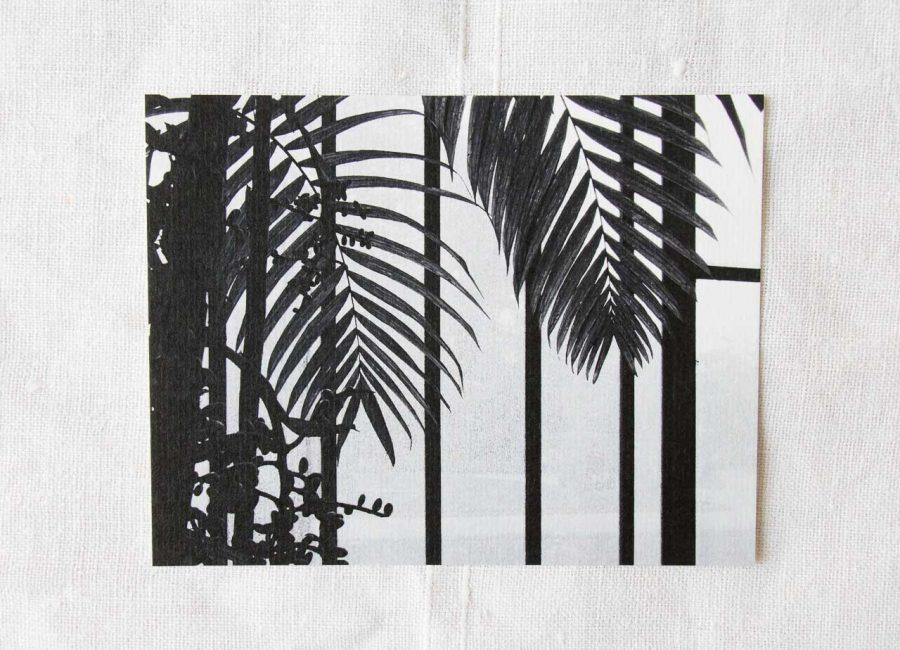 Carte Photo - Palmier Maison mathuvu