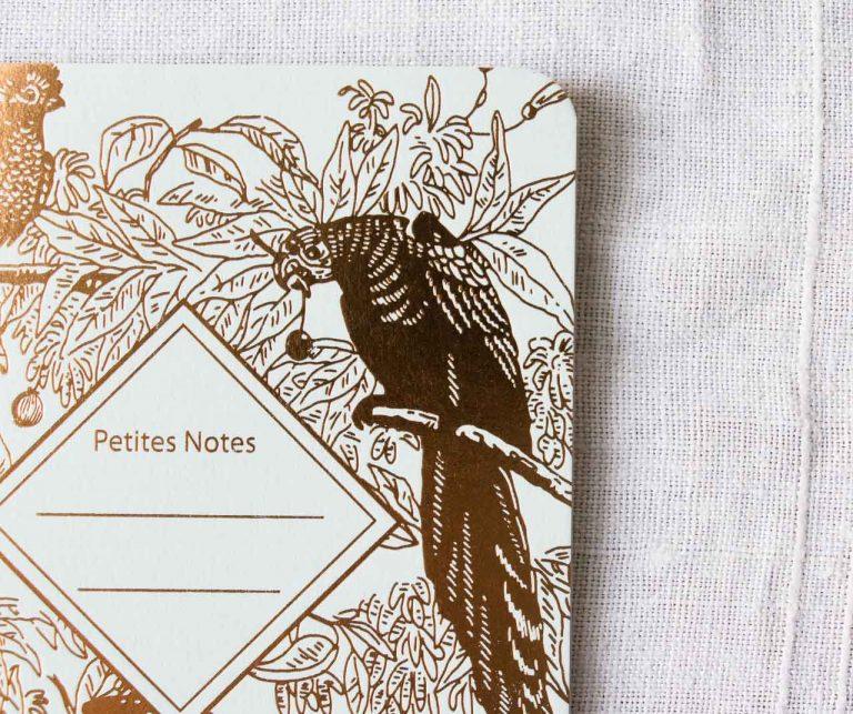 Carnet fin - Paradis tropical Les éditions du Paon - maison mathuvu