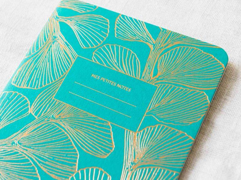 Carnet fin - Coral émeraude les éditions du paon - maison mathuvu
